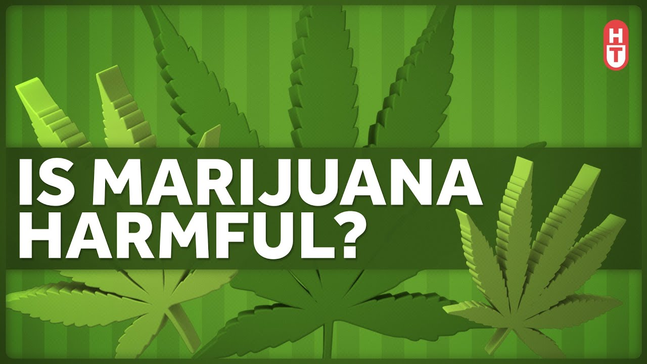 Is Marijuana Harmful to Health?