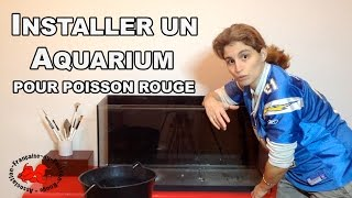 Installer un aquarium à poisson rouge