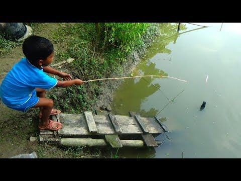 Best Live Fishing Video | Kids Fishing By Daily Village Life (Part-02)