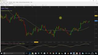 How do I use the Trading Station Market scope Software on my PC?_Video 3