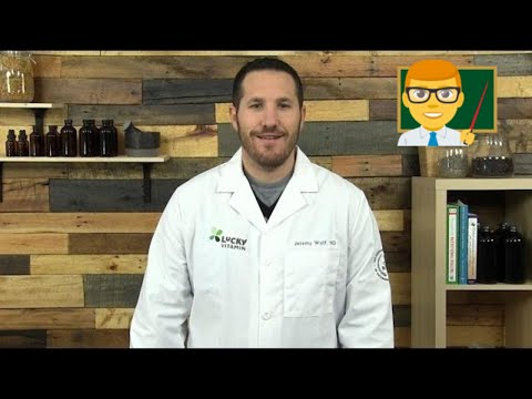 Chamomile | Ask the ND with Dr. Jeremy Wolf