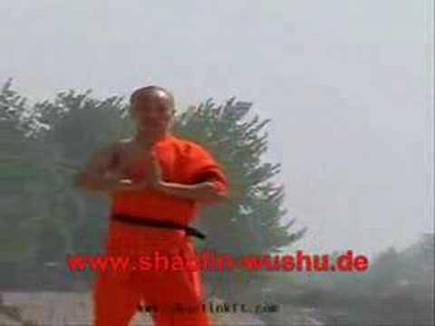 Real Shaolin Kung Fu Master