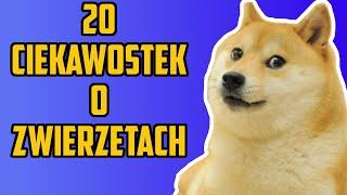 20 Ciekawostek o zwierzętach