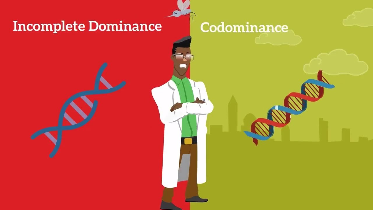 genetics basics: difference between codominance and incomplete