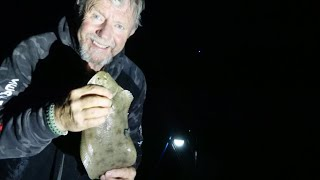 Night  fishing  on the Beach, Conger and Sole