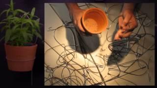 Dripdrip Diy Vertical Gardening