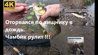 Успешная рыбалка в дождь Голавль щука окунь на спиннинг