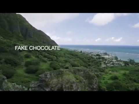 Fake Chocolate Official Book Trailer