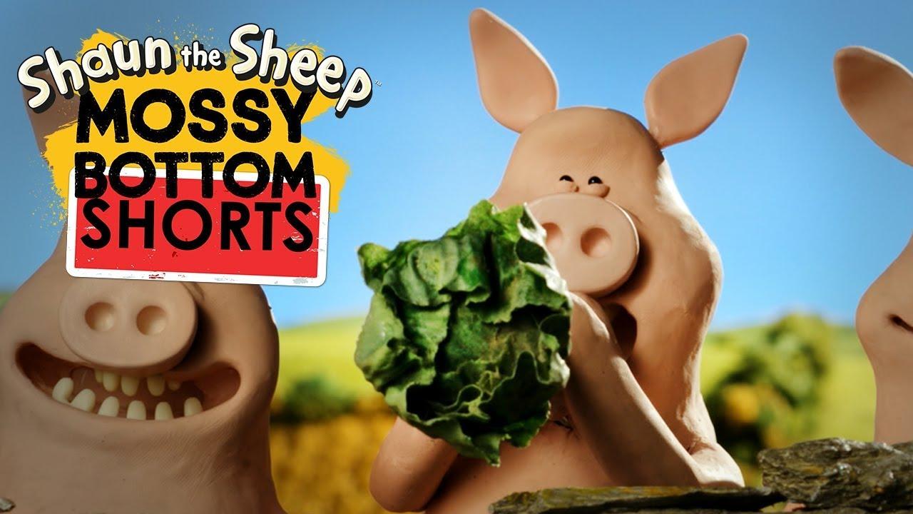Bắn hạt | Mossy Bottom Shorts | Những Chú Cừu Thông Minh [Shaun the Sheep]