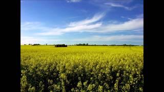 """Antonio Vivaldi - RV 315 """"Summer"""""""