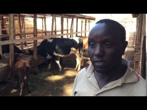 Kenyan dairy farmer has big plans