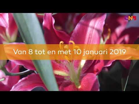 Video still: CNB Bloem- en relatiedagen