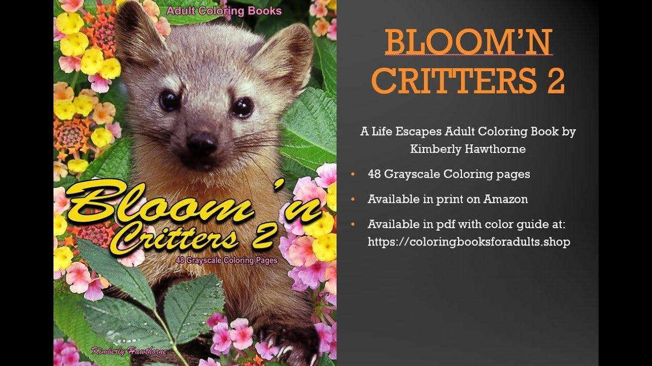 Bloom N Critters 2 Adult Coloring Book Flip Thru