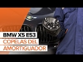 Cómo cambiar copelas del amortiguador en BMW X5 E53 INSTRUCCIÓN | AUTODOC