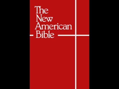 The New American Bible - Part One - Problems