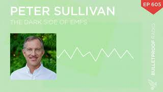 The Dark Side of EMFs – Peter Sullivan – #605