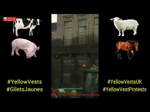 French yellow vest farmer fires MANURE at government buildings.