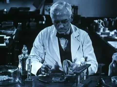 Discovery of Penicillin (480p)