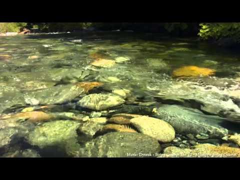 Emerald Rivers - Summer in the Klamath-Siskiyou