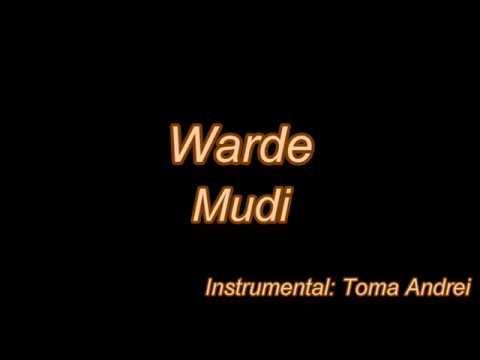 mudi---warde-🌹-(karaoke)-|-toma-andrei