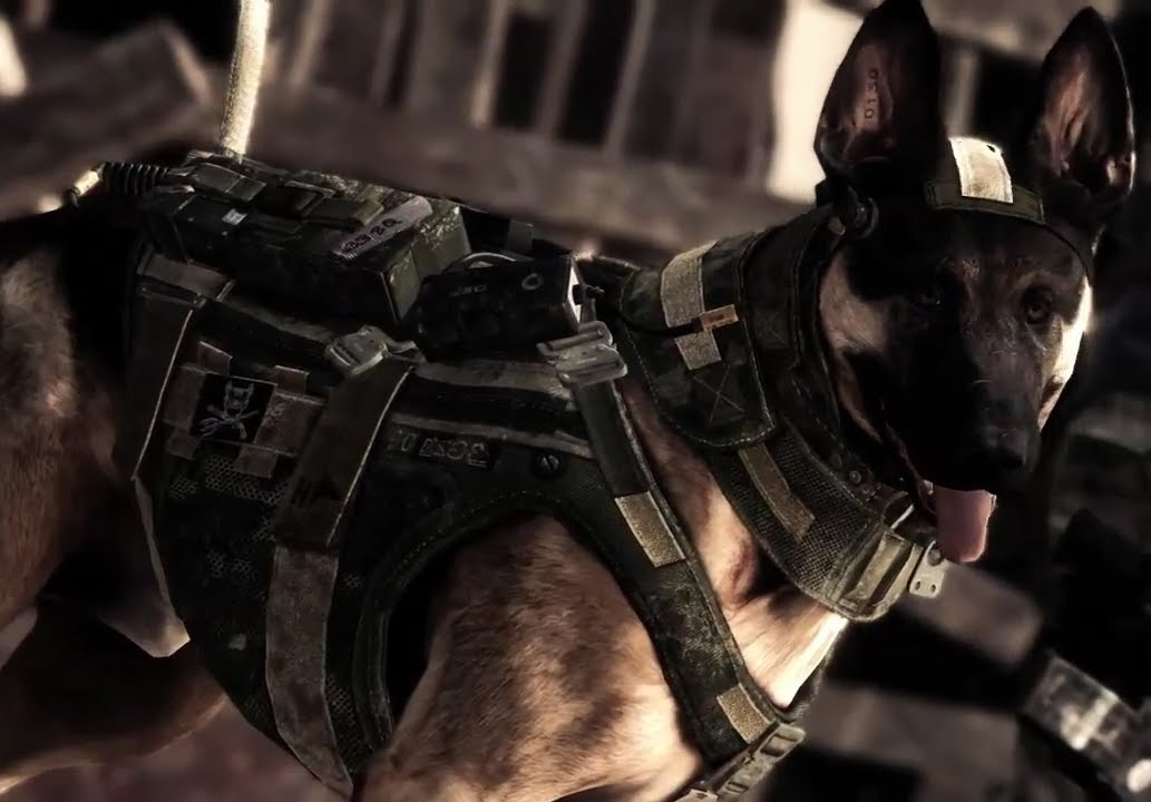 Riley From Call Of Duty Ghosts Dog Death In Battlefield 4