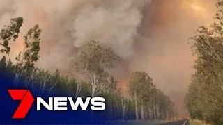 Bushfire Emergency In Northern Nsw   7news