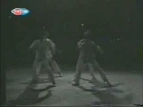 HONKİ PONKİ - TRT KLİP 1980