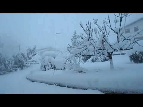 Nevicata Sant'Omero Gen2017 04