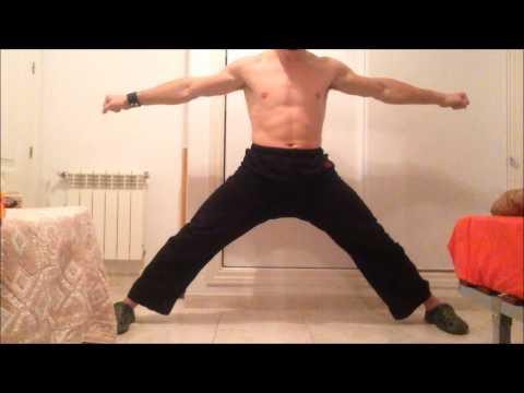 Horse Stance Training Fundamentals Part 1