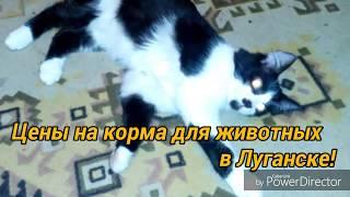Цены на корма для животных в Луганке