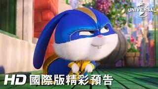 【寵物當家2】兔兔篇-2019年暑假 歡樂登場
