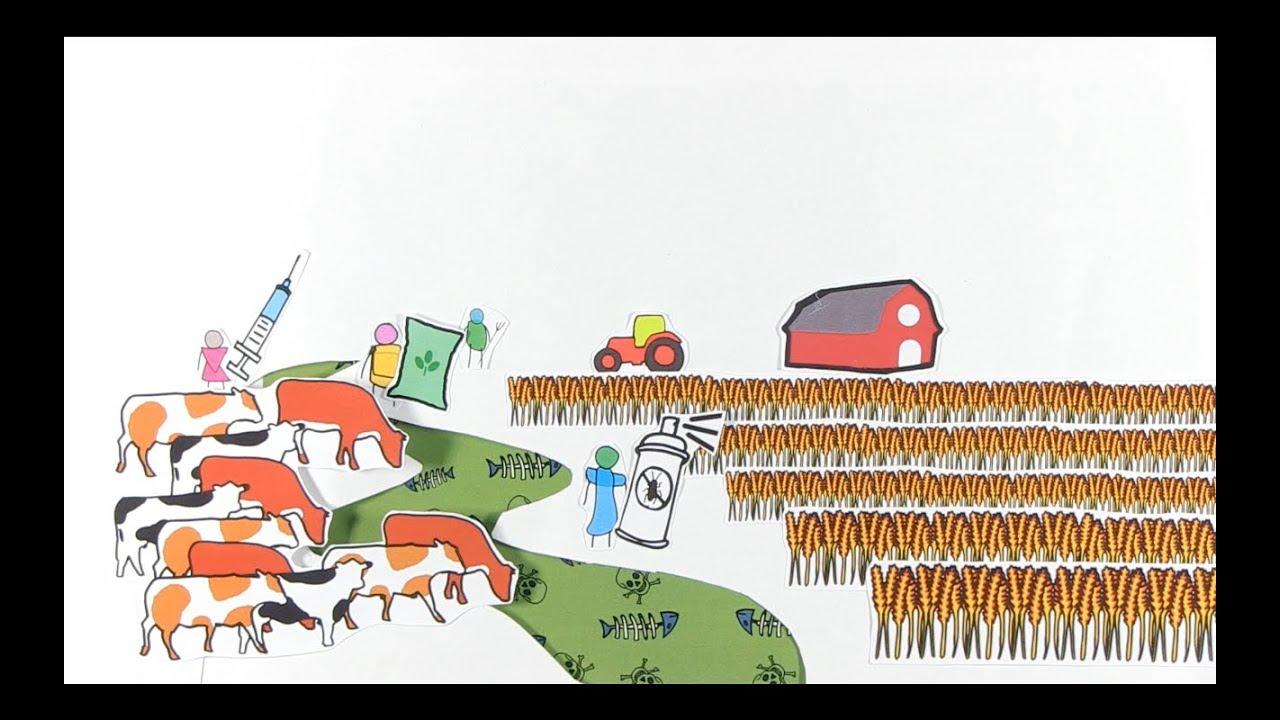 The Environmental Impact of Livestock -  RUVIVAL Toolbox