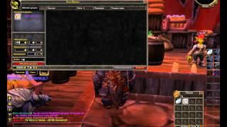 Как поставить вещи на аукцион (World of Warcraft)