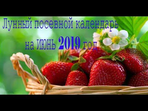 Лунный посевной календарь на июнь 2019 год