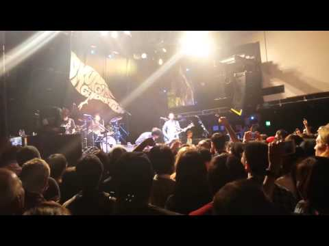 Asian Kung-Fu Generation - Understand (Live in London, 8th November 2015)