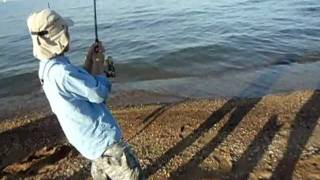 Chesapeake Bay - Sandy Point, MD - Fishing a Cownose Ray