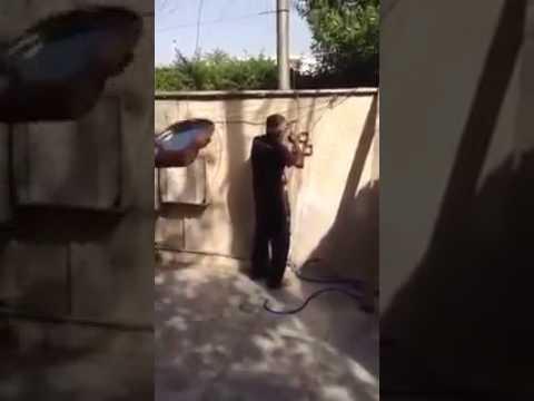 гудрат приколы клип азербайджан посмотреть бесплатное видео