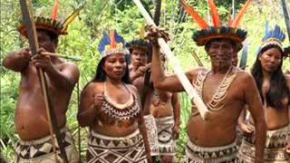 Informe especial sobre conflictos Amazónicos