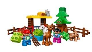 Lego Duplo Forest Animals 10582 Building
