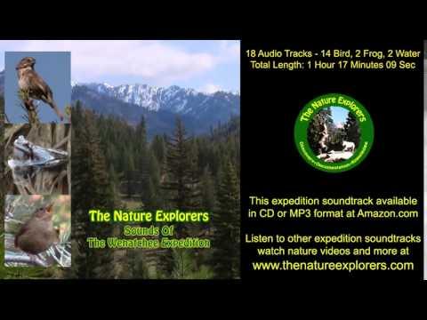 Wenatchee Expedition Soundtrack Birds, Frogs, Washington Wildlife Nature Sounds MP3