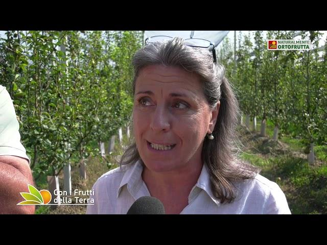 Puntata del 8/09/19 – 1° parte – Frutteti sotto assedio