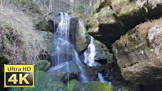 Nationalpark Sächsische Schweiz  Doku  Germany vlog 4k video ultra hd PANASONIC Lumix DMC-FZ1000(Kirnitzschtal - Sächsische Schweiz in 4k video ultra hd mit FZ1000 Das Kirnitzschtal verdankt seinen Namen dem Flüsschen Kirnitzsch. Dieser mündet nach ca., 2015-12-12T18:19:50.000Z)