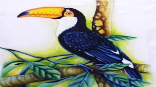 Aula Super Especial de Pintura no Tecido Tucano