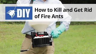 How to Kill & Get Rid of Fire Ants - Fire Ant Control & Treatment Instructions