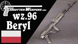 wz.96 Beryl: Poland's 5.56mm Military AK