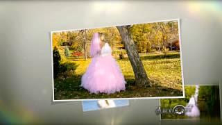 Фотограф на свадьбу в Волгограде  Д.Ащеулов 89275140009