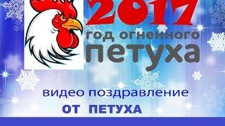 Новогодние поздравления от петуха(ВИДЕО ПОЗДРАВЛЕНИЕ !!! Новогодние поздравления от петуха. Новогодние поздравления с годом Петуха 2017 ++++++++++++++..., 2016-12-29T05:25:56.000Z)