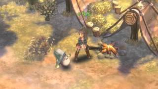 Tree of Savior - Doppelsoeldner - Pain Barrier