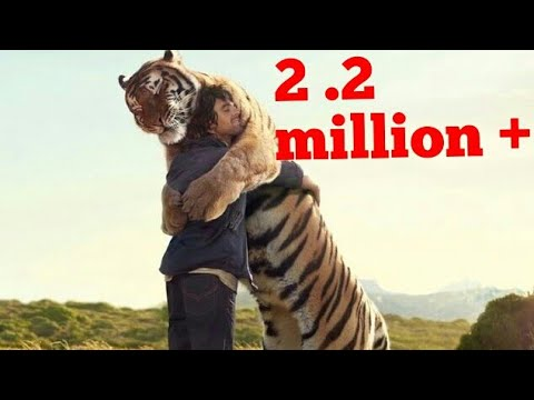 Animals Hugs To Their Friends Humans Its Emotional YouTube - 25 heartwarming moments animals hugging