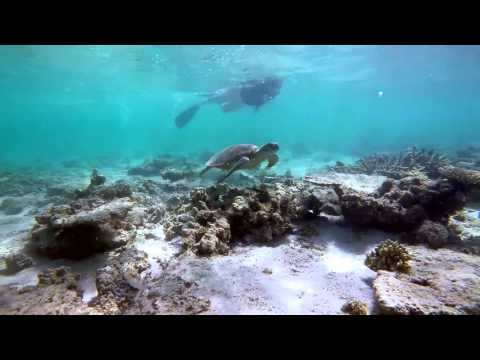 Exmouth Snorkeling